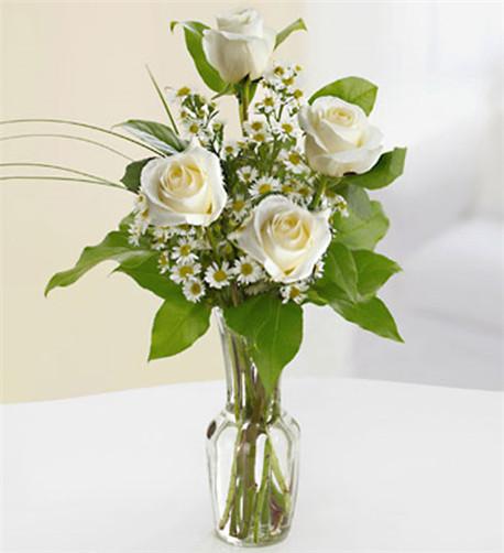 White Rose Quartet