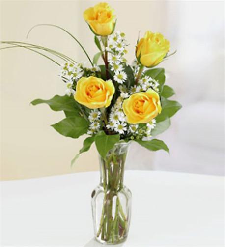 Yellow Rose Quartet